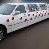 Свадебные украшения на машину №24